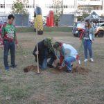 Plantio simbólico no pátio da Faculdade Suprema/JF