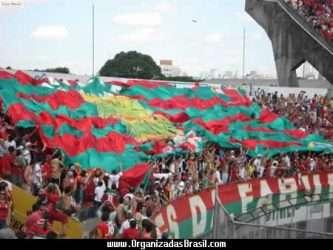 Torcida da Portuguesa (SP) - Imagem da internet